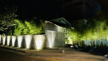 Our cinema in the 'bamboo forest'