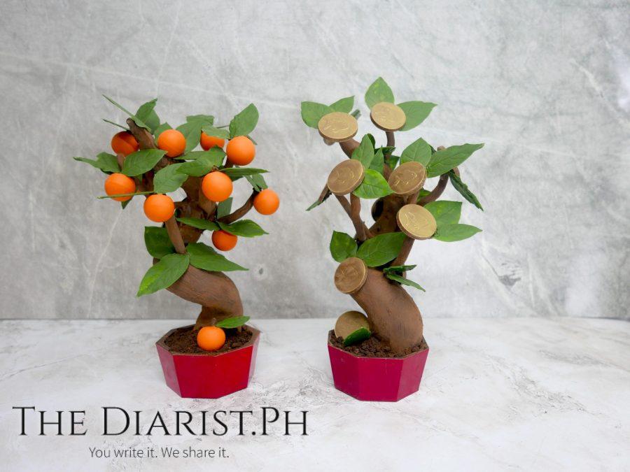 2021_Chocolate Trees
