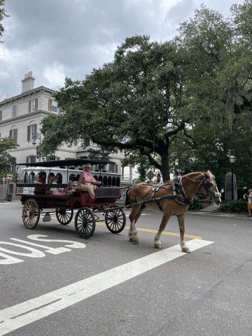 Ben Chan takes pause in Savannah