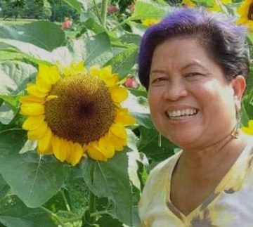 The time I spent with my sunflower